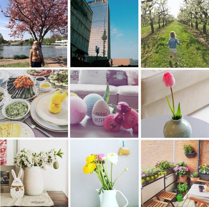 magnoliaelectric magnoliasfrühlingserwachen instagram challenge frühling spring fotochallenge